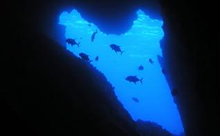 ダイビングエリア